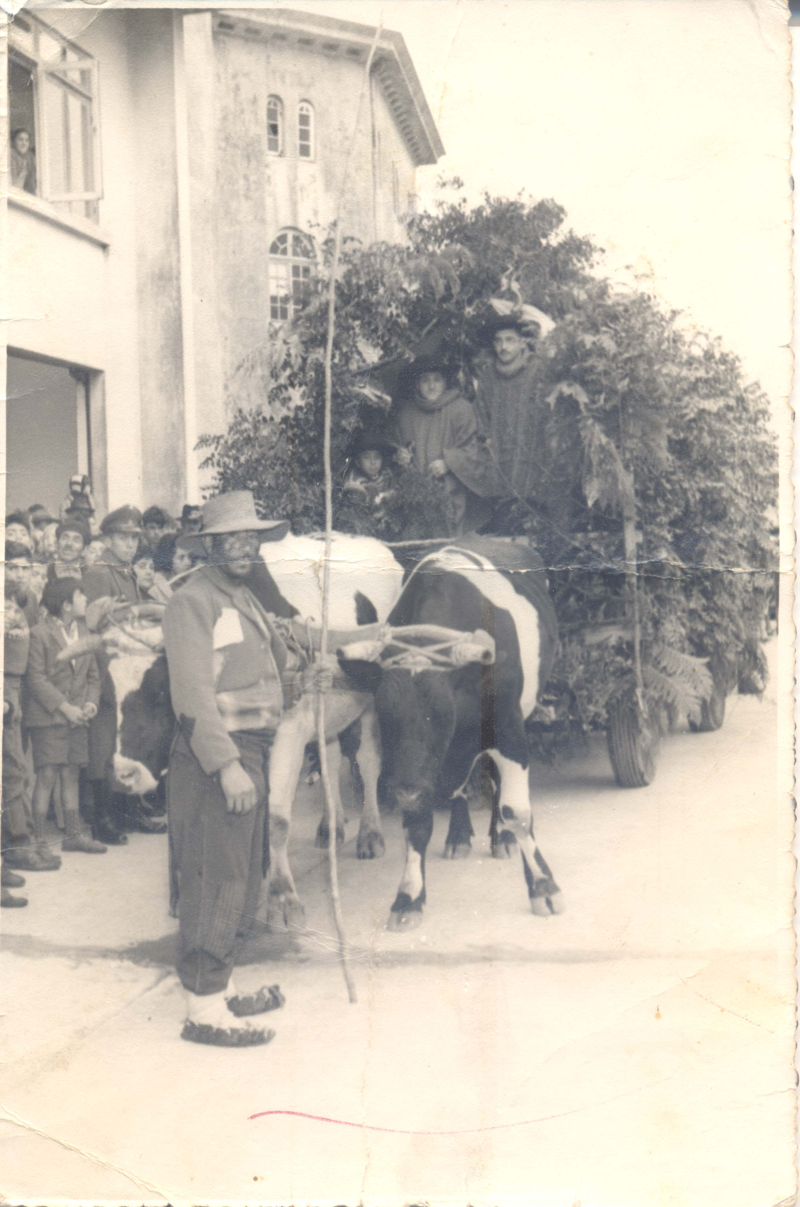 Fiesta de la primavera - Memorias del Siglo XX - Chile - DIBAM
